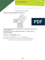 Tema 9- pitagoras.pdf