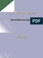 22 Biology 2-6-08 Nervous System 2 CNS