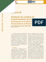 Ed 98 Fasciculo Cap III Manutencao de Transformadores