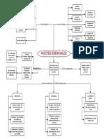 Aceites Esenciales - Mapa Conceptual (1)