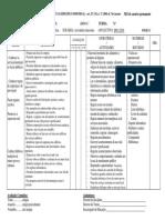 Programação CEI AVD.pdf