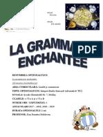VI LA GRAMMAIRE - Programa Optional