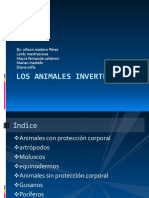 Los animales invertebrados.pptx