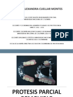 PDF Protesis Parcial Removible 2017-2