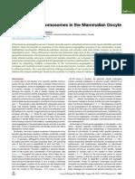 Segregating Chromosomes in the Mammalian Oocyte.pdf