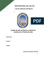 Universidad Nacional Del Callao Efe y Cpn