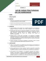 231660860-Informe-1-Caras-Fracturadas.docx