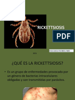 Rickettsiosis bacteriologia