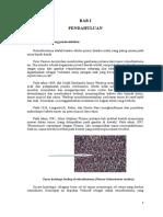 referat-retinoblastoma