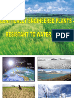 Genetically Engineered Plants