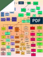 mapa celula
