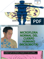 Exposicionmicrobiota 150211161319 Conversion Gate02