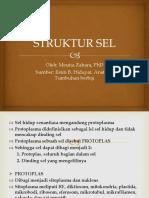 3. STRUKTUR SEL edit.pdf