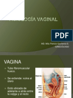 Fisiologia Vagina