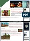 Http Unaantropologaenlaluna Blogspot Pe 2014 06 La-sexualidad-igualitaria-las-Islas HTML