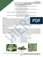 PLANT LEAF DISEASE DETECTION