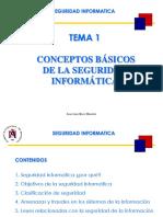 Seguridad Informatica (Tema1)
