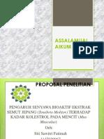 ppt metlit proposal jadi 2.pptx