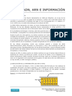 115_ADN_ARN_e_informacion.pdf
