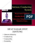 Intrinsic Conducting System_CVS-K2 Umsu