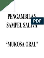 Pengambilan Sampel Saliva