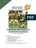 Sistema de Costos Agropecuarios