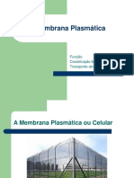 4 Membrana Plasmática (1).ppt