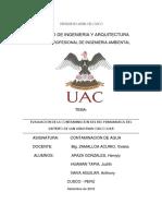EVALUACION DE LA CONTAMINACION DEL RIO PUMAMARCA.docx