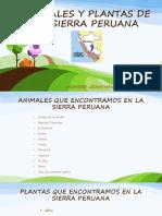Animales y Plantas de La Sierra Peruana