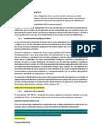 GEOLOGIA DE SUPERFICIE.docx