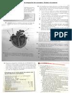 Actividades de integración de conceptos.pdf