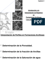 REGISTRO DE POZOS - Interp. de Registros_Form. Arcillosas