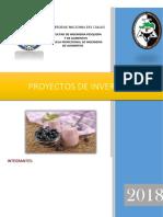 PROYECTO YOGURT DE ARANDANO.docx