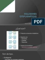 Inclusiones citoplasmáticas