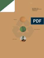 Arauco - 2004 Informe de Responsabilidad Ambiental y Social