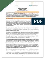 Bases de Postulacion Convocatoria Abierta 2017 Acta 095 2017