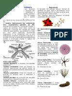 bio.resumo.equinordemos.pdf