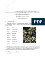 Trabajo_especial.pdf