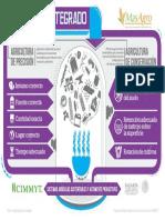 Infografia enfoque integrado