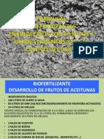 PREPARADOS OLIVOS.pdf