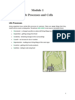 Module 1 Life Processes and Cells