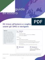 Guida_Estero.pdf