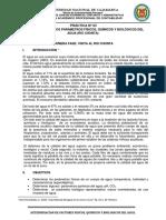 DETERMINACION_DE_LOS_PARAMETROS_FISICOS.docx
