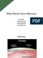 keratitis, ulkus, endoftalmitis-1.ppt