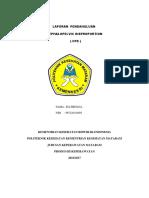 LP CDP ELI.docx