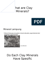 What Are Clay Minerals (Gojek)