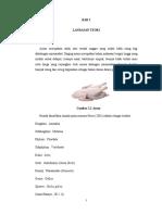 HM Bab2001.pdf