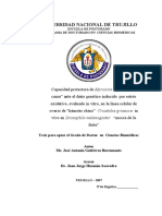 Tesis Doctorado - José a. Gutiérrez Bustamante
