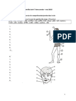 B - 3.1 - Teste Diagnóstico - Actividade Vulcânica (1) - Soluções