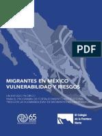 Migrantes en México, vulnerabilidad y riesgo